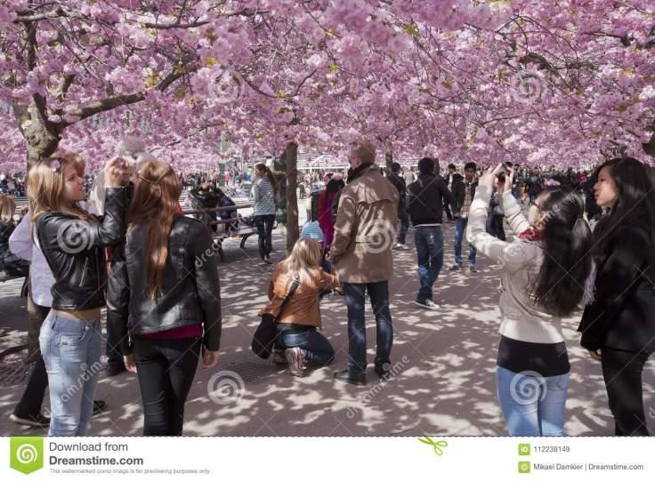 gente-que-camina-en-un-parque-florido-112238149